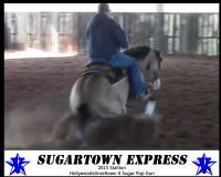 Sugartown Express
